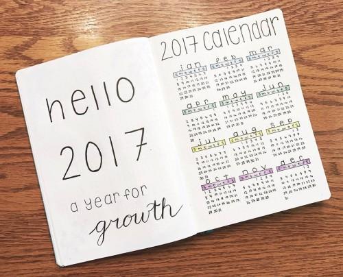2017 Overview.jpg